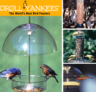 birds_products
