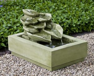 Hosta Fountain