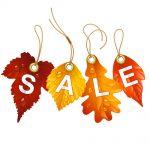 bigstock-Autumnal-discount-Vector-fall-51005057