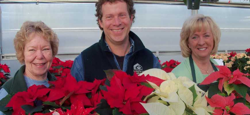 staff-with-poinsettias-870